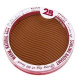 2B Cosmetics Maxi Terra Powder 02
