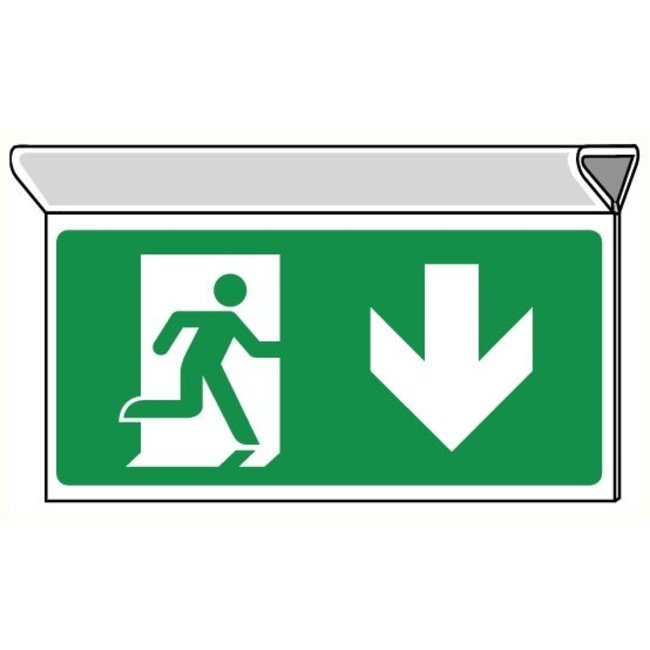 Pikt-o-Norm Pictogram emergency exit down