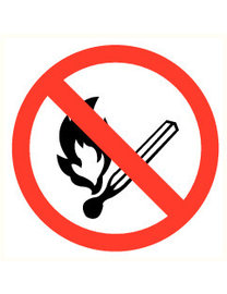 Pikt-o-Norm Pictogram fire prohibited