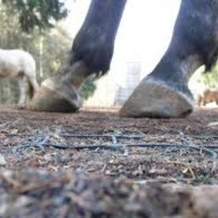 Paarden PADDOCK roosters voor droge ondergrond.