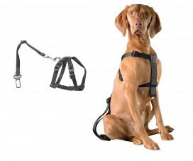 Duvo+ Auto Veiligheidsharnas met gordel voor hond maat M 50-70cm