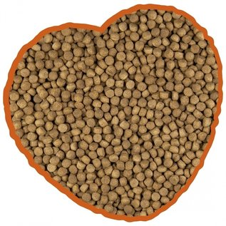 Duvo+ Hondenvoer lam & rijst menu 14kg