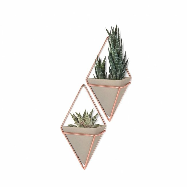 Umbra Wall Vessel Set 'Trigg' (copper/concrete)