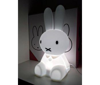 Lamp 'Nijntje Eerste Licht'