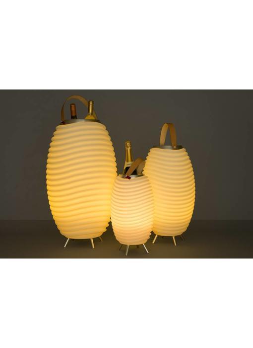 Speaker + LED Lamp + Wijnkoeler 'Synergie 65' (large)