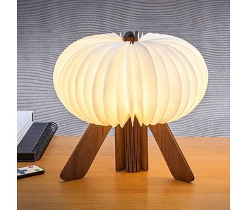 Design Table Lamp 'The R Space'