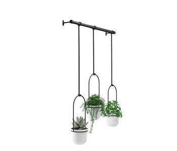 Bloempot Triflora - hangend