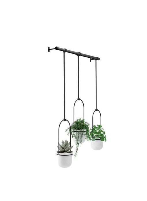 Jardinière Suspendue 'Triflora'