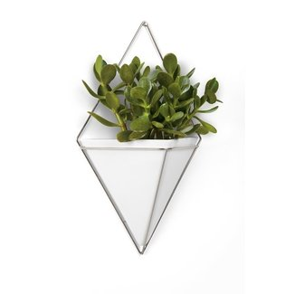 Umbra Wall Vessel 'Trigg' XL (silver)