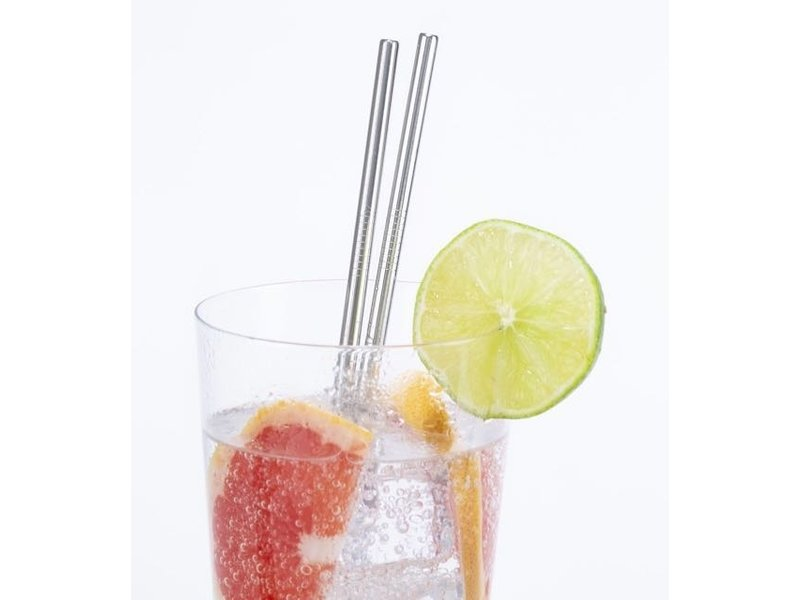 Kikkerland Durable straws (stainless steel)
