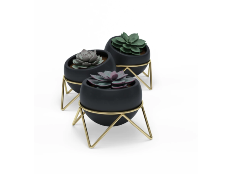 Umbra Plant Pot - Planter Potsy - set of 3 - ceramics