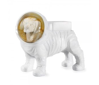 Luxury Dream Globe Space Dog