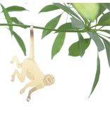 Plant Diertje Aap