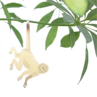 Animal Plante Singe