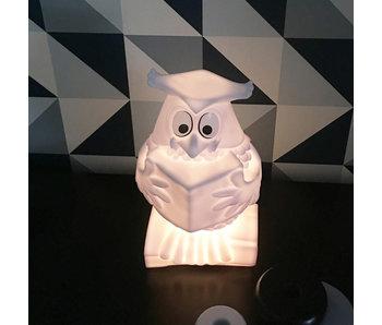 Nachtlampje Meneer de Uil
