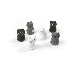 Magnets Cat
