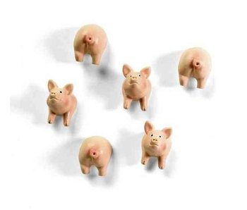 Aimants Cochon
