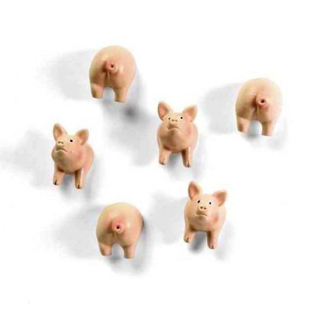 Aimants Cochon - ensemble de 6 - puissant