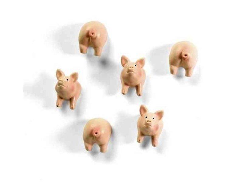 Trendform Aimants Cochon - ensemble de 6 - puissant
