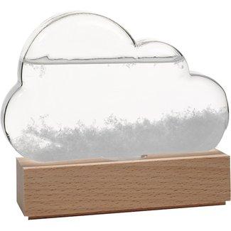 Bitten Weather Predictor Storm Cloud