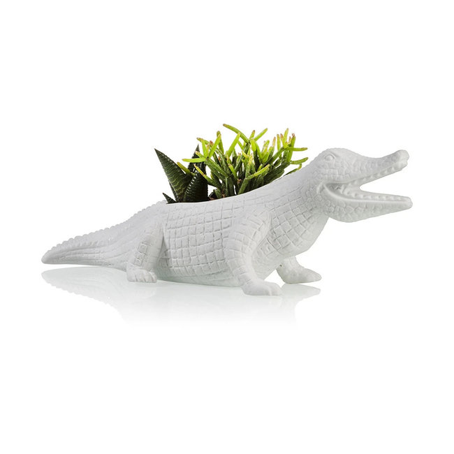 Bitten Planter Crocodile