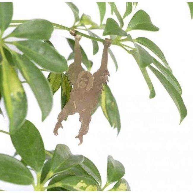 Pflanze Tier Orang-Utan - Another Studio