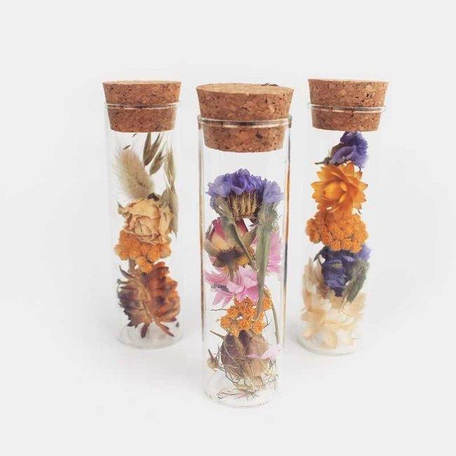 Plantophile Getrocknete Feldblumen in Mini-Vase