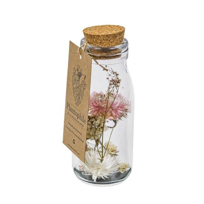Plantophile - Getrocknete Blumen in einer Flasche
