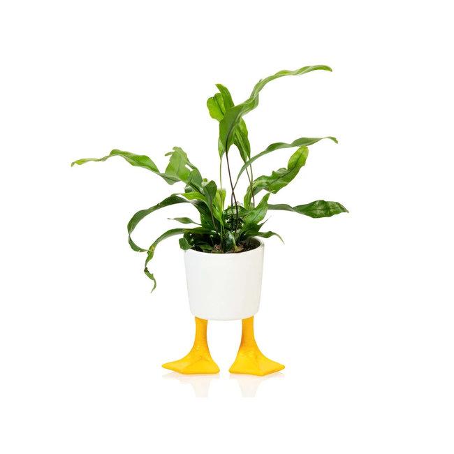 Bitten - Blumentopf Entenbeine - Porzellan - small
