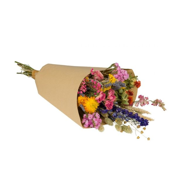 Plantophile Trockenblumenstrauß - mehrfarbig