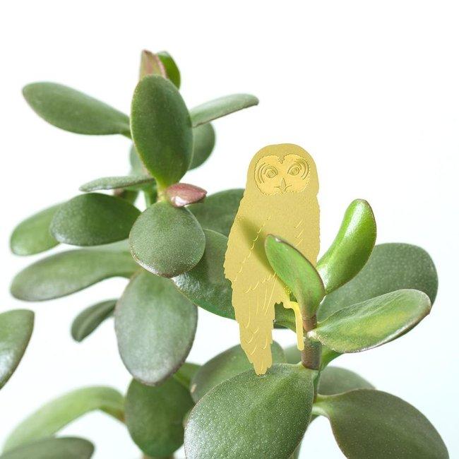 Another Studio - Pflanzentier Eule