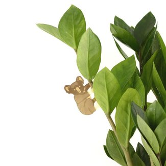 Another Studio Pflanzentier Koala