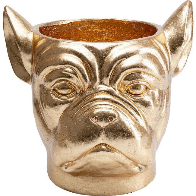 Karé Design - Blumentopf - Übertopf Bulldogge - gold