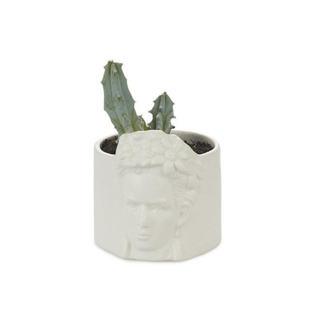 Mini Flower Pot Frida Kahlo