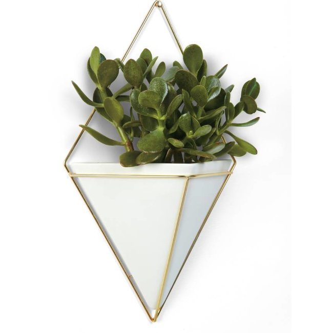 Umbra Wall Vessel Trigg XL - gold