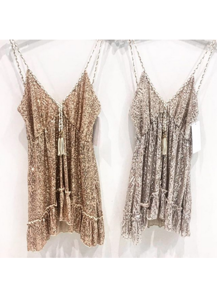 EXCLUSIVE SILVER DRESS