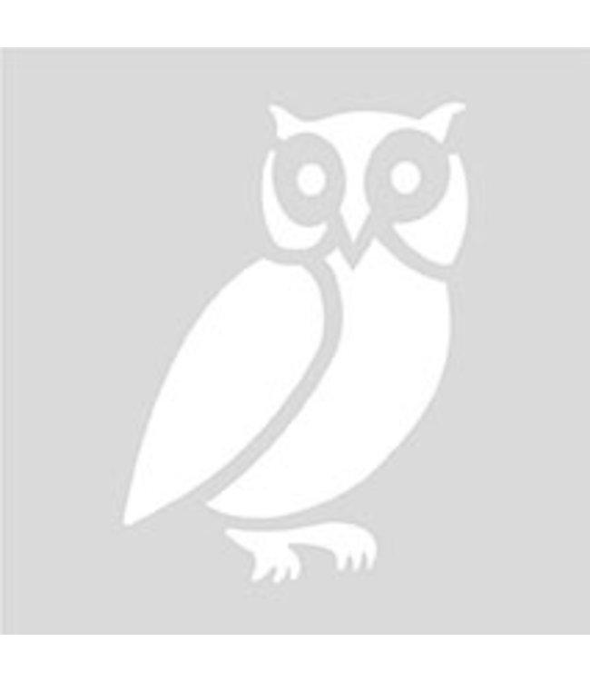 Rico Design Herbruikbaar sjabloon 7,5cm - uil