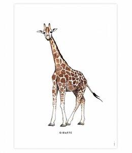 Bintje Poster - Giraf
