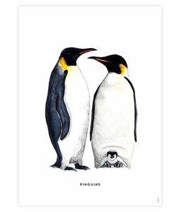 Bintje Poster - Pinguins