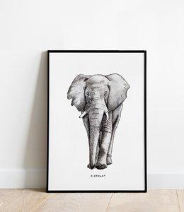 Bintje Poster 30x40 - Olifant