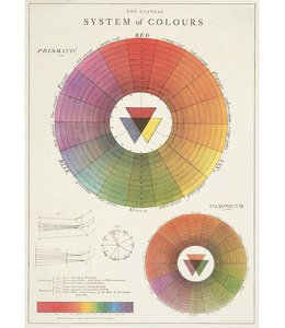 Cavallini & Co Poster Color Wheel