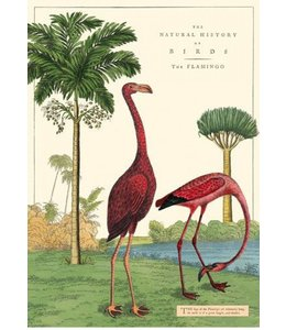 Cavallini & Co Poster Flamingo