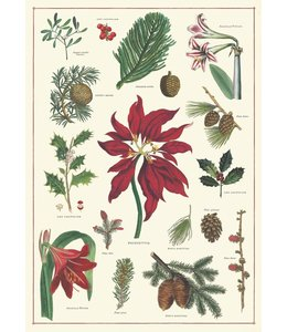 Cavallini & Co Poster - Kerst