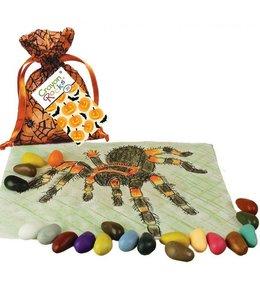 StudioZomooi Crayon Rocks Spin - 20 stuks