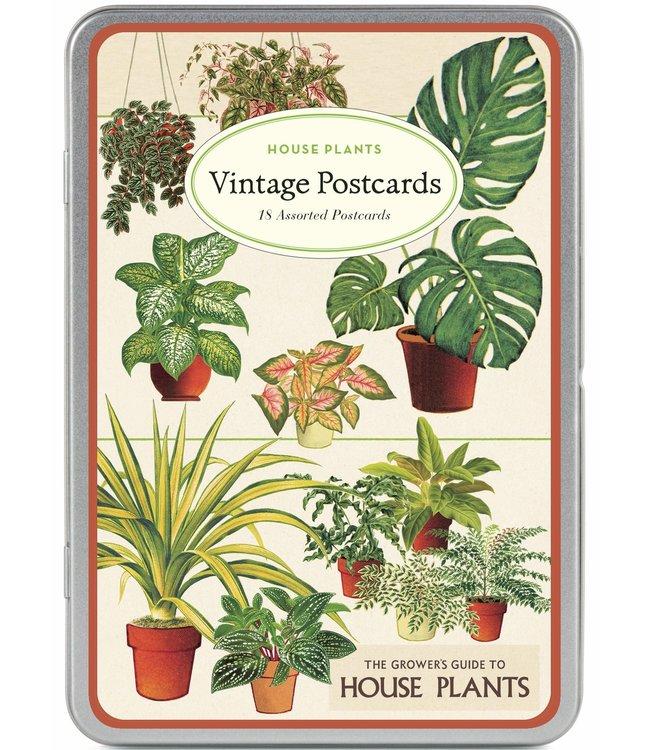 Cavallini & Co 18 vintage postkaarten in blik - Kamerplanten