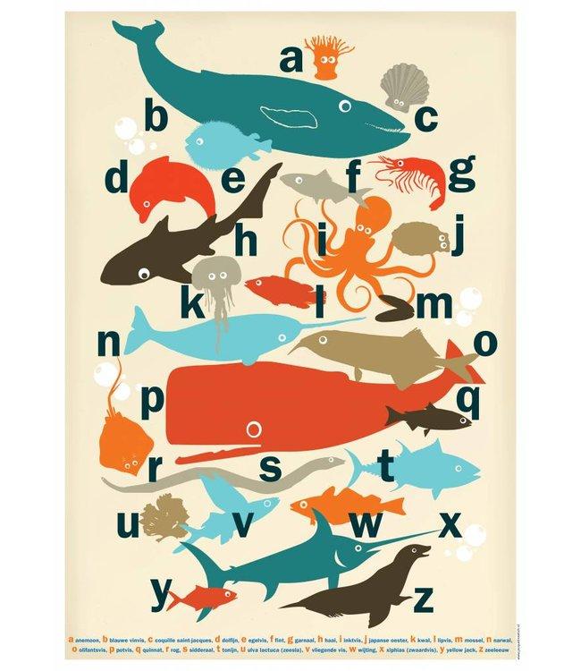 de Beeldvink Poster - Van potvis tot zeesla