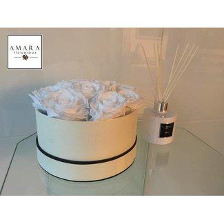 AMARA | FLOWERBOX AMARA Flowerbox Beige Grösse M
