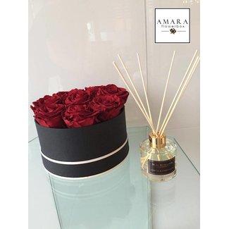 AMARA | FLOWERBOX AMARA Flowerbox Schwarz  Grösse M