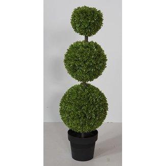 Fink-Living Fink-Living  Buchsbaum, Kunstblume BUCHSBAUM