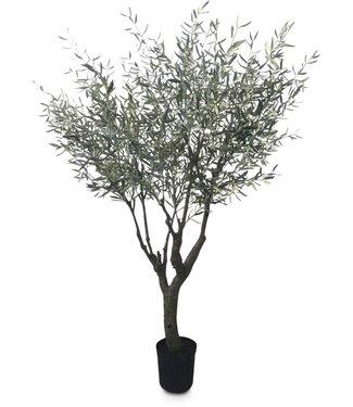 Fleur ami OLIVENBAUM Kunstpflanze, 245 cm